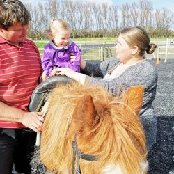 Waikato Equitherapy Incorporated